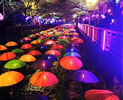 ソウルの四季と祭り
