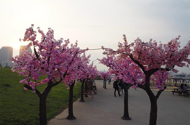 造花の桜並木
