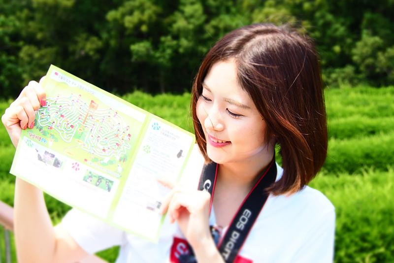キムニョン迷路公園