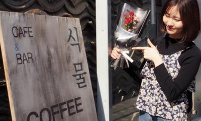 カフェ&バー「植物」