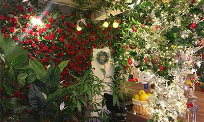 「バラ」に囲まれ「苺」を堪能!カフェ『Bloom story』