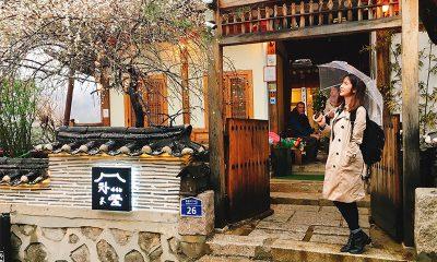 チャマシヌントゥル(茶を飲む庭)