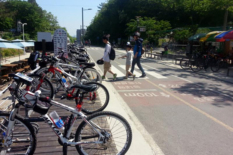 漢江公園で人々が楽しむレジャー