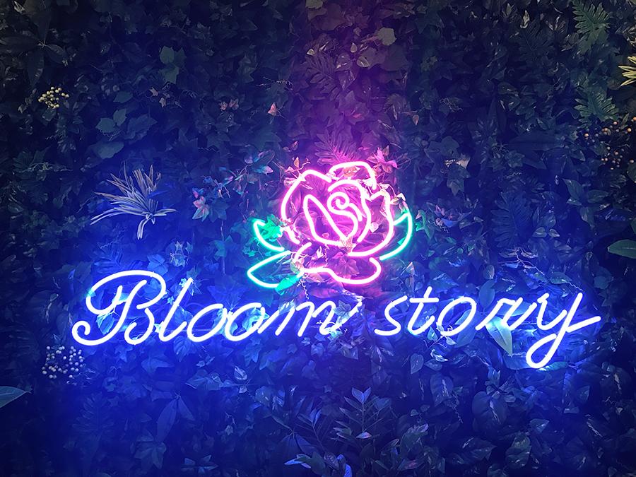 Bloom story